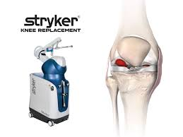 Knee Compartments Anatomy Latest News Twin Palm Orthopedics