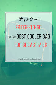 How Long Can Breast Milk Sit Out At Room Temperature - fridge to go reviews cooler bag for breast milk living with low
