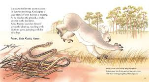 adventures of the little koala koala claire saxby julie vivas 9780763694814 amazon com books