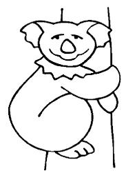 koala bear drawing coloring color luna
