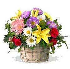 Flowers For Birthday 43 Best Birthday Gifts Images On Pinterest Birthday Gifts