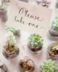 succulent wedding favors 36 ideas for using succulents at your wedding martha stewart