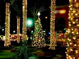 christmas christmas lights on outdoor trees hanging for palm