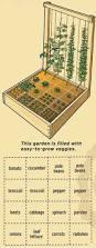 best 25 starting a vegetable garden ideas on pinterest starting