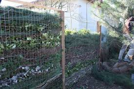composting fence sustainable scientist