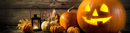 small pumpkins where are the best pumpkin patches near hickory nc
