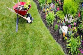 Fall Cleanup Landscaping by Welcome To Nieto Landscaping Llc