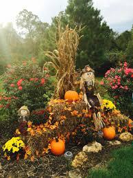 fall display at driveway entrance with mums pumpkins corn stalks