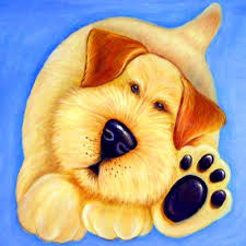 dog pictures sayings promotion shop for promotional dog pictures