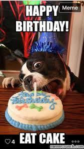 Birthday Cake Dog Meme - dog birthday meme birthday dog 3 maggie s board 3 pinterest