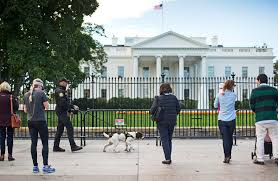 the white house needs a new fence no a moat won u0027t work wired