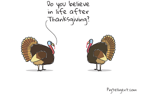 thanksgiving turkey wisdom pigtelligent