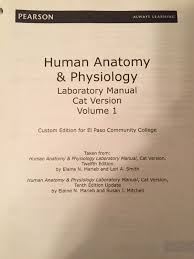 Human Anatomy And Physiology By Elaine N Marieb Epcc Human Anatomy U0026 Physiology Laboratory Manual Volume 1 Cat