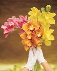 pink orange yellow orchids wedding bouquet the bouquet