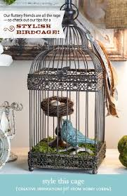 bird cage decoration using bird cages for decor 46 beautiful ideas digsdigs