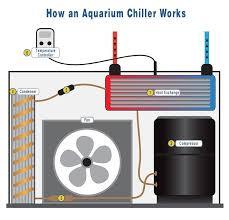 best fan for aquarium 19 best reef aquarium charts diagrams images on pinterest fish
