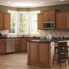 Home Depot Kitchen Makeover - kitchen cabinets color gallery at the home depot