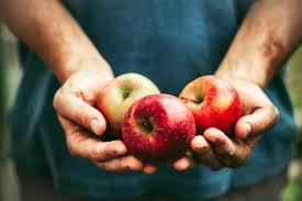 cancer fighting foods 30 foods to prevent cancer reader u0027s