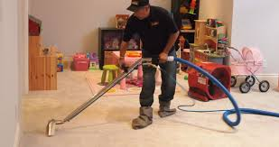 Blind Cleaning Toronto Cleanol Toronto Carpet Cleaning And Upholstery Cleaning