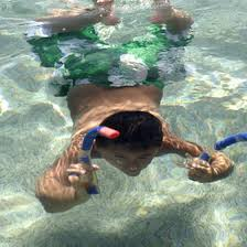 Maryland snorkeling images Kids 39 safety tips for snorkeling around coral reefs usa today jpg