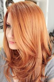 redken strawberry blonde hair color formulas gorgeous redhead colored with redken shades eq 6cb 6aa red