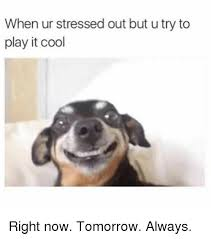Funny Stress Memes - when ur stressed out but u try to play it cool right now tomorrow