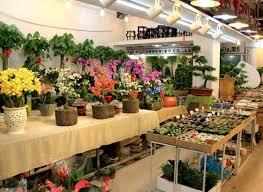 Flower And Bird - shanghai s best flower and bird markets