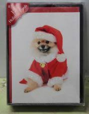 dog christmas cards dog christmas cards ebay