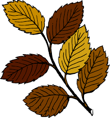 clipart autumn leaves on branch
