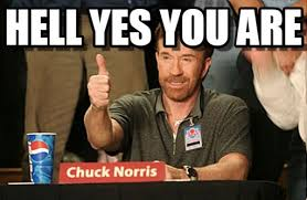 Hell Yes Meme - hell yes you are chuck norris approves meme on memegen