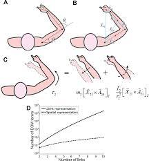articles journal of neurophysiology