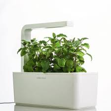 Indoor Herb Garden Kit Australia - indoor hydroponic herb garden