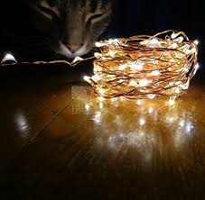 lights 39ft warm white led copper wire