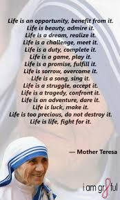 mother teresa an authorized biography summary 119 best mather teresa images on pinterest mother teresa mother