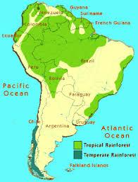 south america map rainforest uwrichlandbotany tropical rainforests