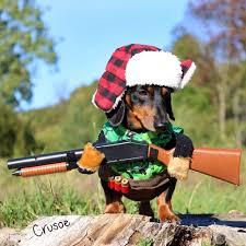 pet costumes dog costume w gun umbrella dog costume hockey dog