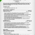 Resume Template Dental Assistant Dental Assistant Resume Template Dental Skills Summary