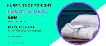 The Bay Duvets Hudson U0027s Bay Canada Today U0027s Deal 99 Sealy My Temperature