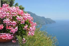 flower places lake como archives walks of italy