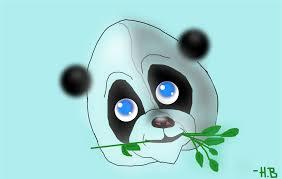 baby panda drawings sketchport