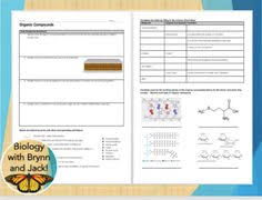 building macromolecules lab activity notes and review questions