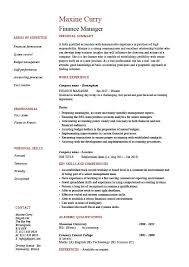 regional manager resume exles finance director cv matthewgates co