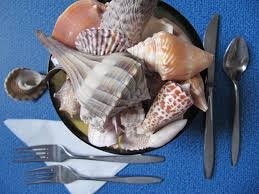 crafts with seashells and beach treasures beach treasures and