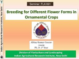 for different flower forms in ornamental crops 1 638 jpg cb 1439277193