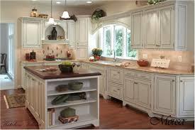 Galley Kitchen Styles Kitchen Style Cottage Galley Kitchen Small Galley Kitchens