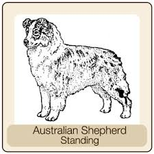 australian shepherd outline dog breeds a d u2014 4 paws pottery