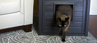 litter box end table investing in a cat litter box end table dogipot