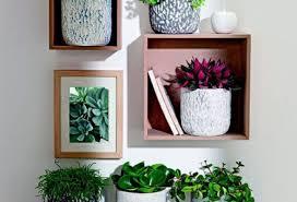 unforeseen concept tall metal planters top hearty indoor plants