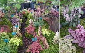 uk plant breeders plantagogo blog