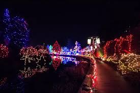Vandusen Botanical Garden Lights Vandusen Botanical Gardens Festival Of Lights 2015 Blushing